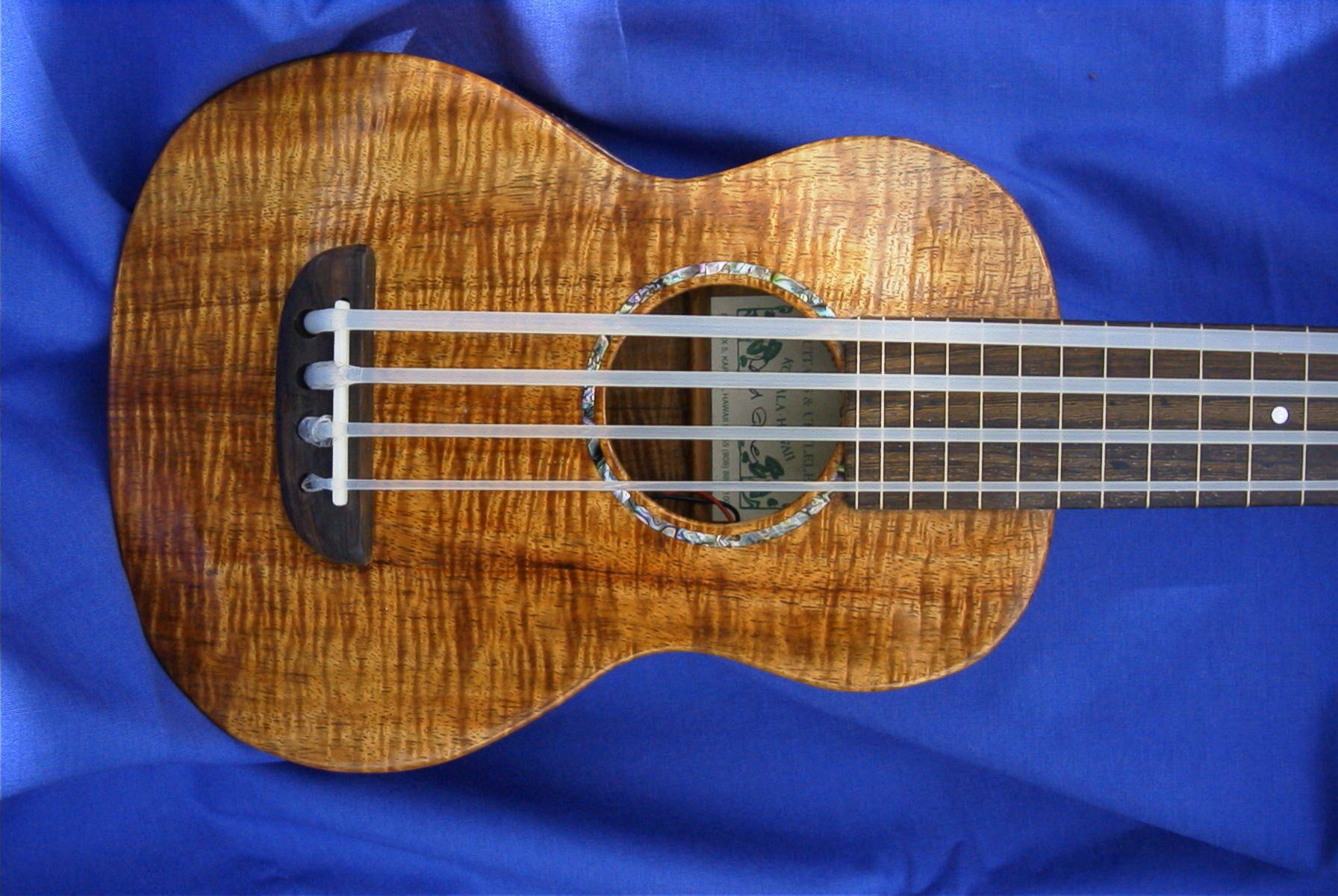 bass ukulele ashbory bass